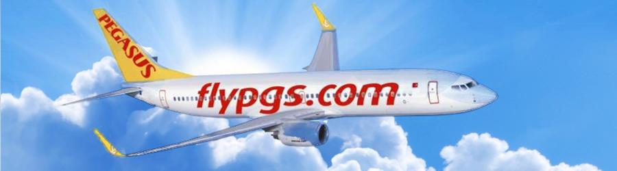 pegasus-airlines-handbagage-afmetingen